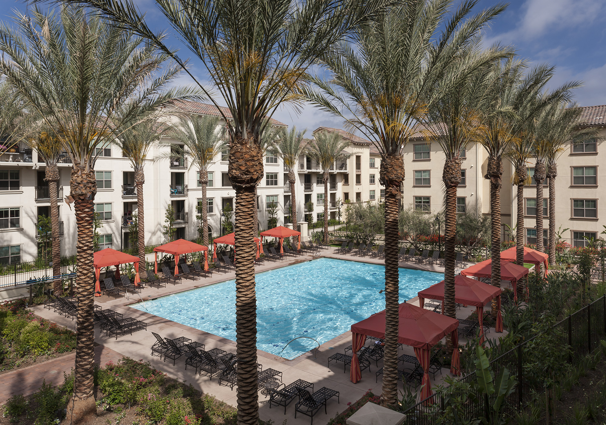 View of the courtyard pool surrounded by lounge chairs, cabanas and palm trees