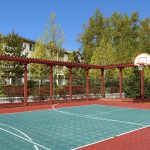 View of basketball court surrounded by a fence and trees.