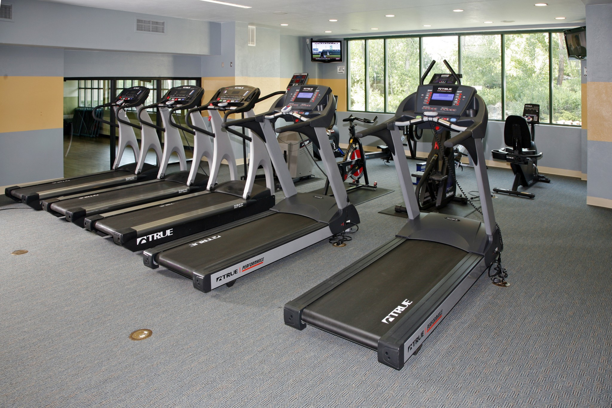 Fitness center with cardio equipment.
